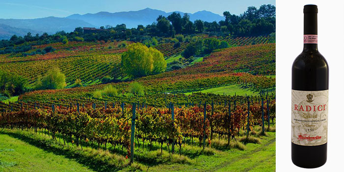 mastroberardino_hero_montemarano_vineyard_700x350.jpg